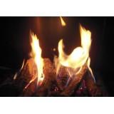 Focus 180 Gas Fireplace Detail Flames and Log set (optional)